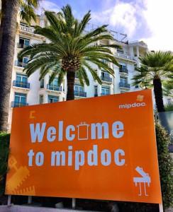 Meet us at MIPDOC2014