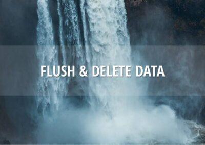 Flush & delete production data